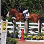 Abbi Stoll riding Beppino in Jumpers