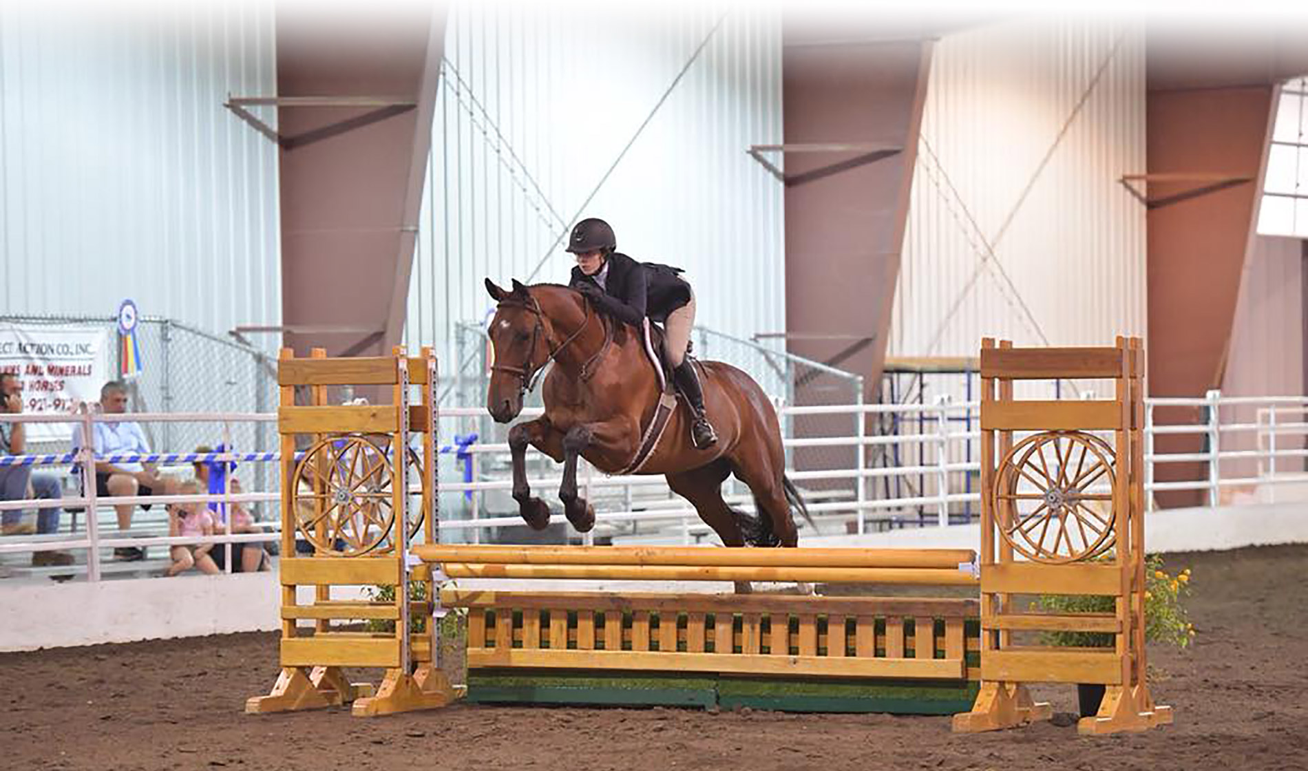 Megan Danforth riding Impeccable hunters