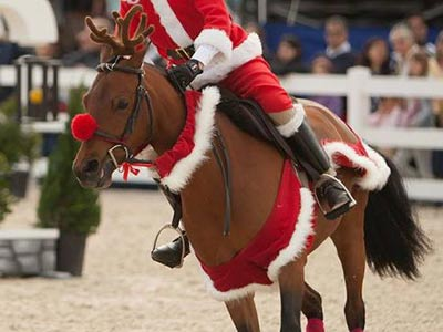 Pony and rider dressed up in holiday gear