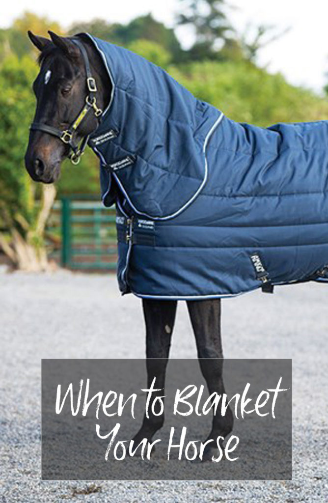 when to blanket your horse